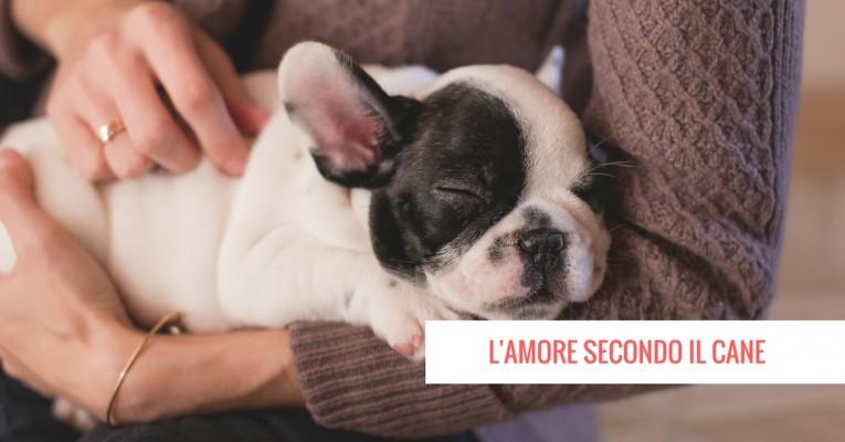 LAMORE-SECONDO-IO-CANE-765x400