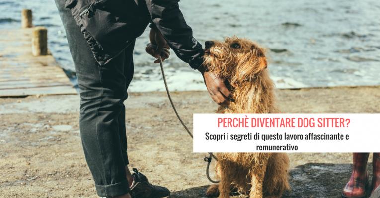 PERCHè DIVENTARE DOG SITTER_