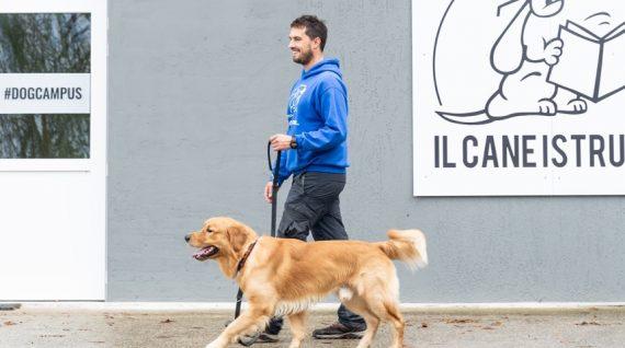 dog-campus-servizio-2