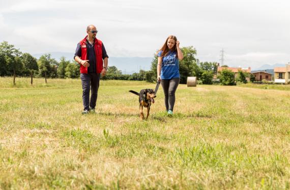 Dog Sitter Academy lezioni sul campo